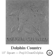 Dolphin Country