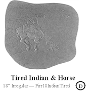 Tired Indian Horse