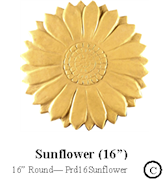 Sunflower 16