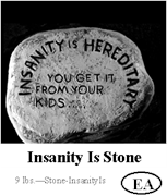 Insanity is Hereditary Stone