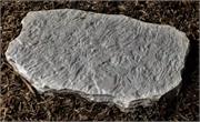 Random-Stepping-Stone-5